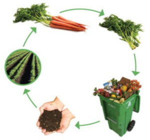 circle of organic composting